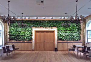 Wand aus echten Pflanzen