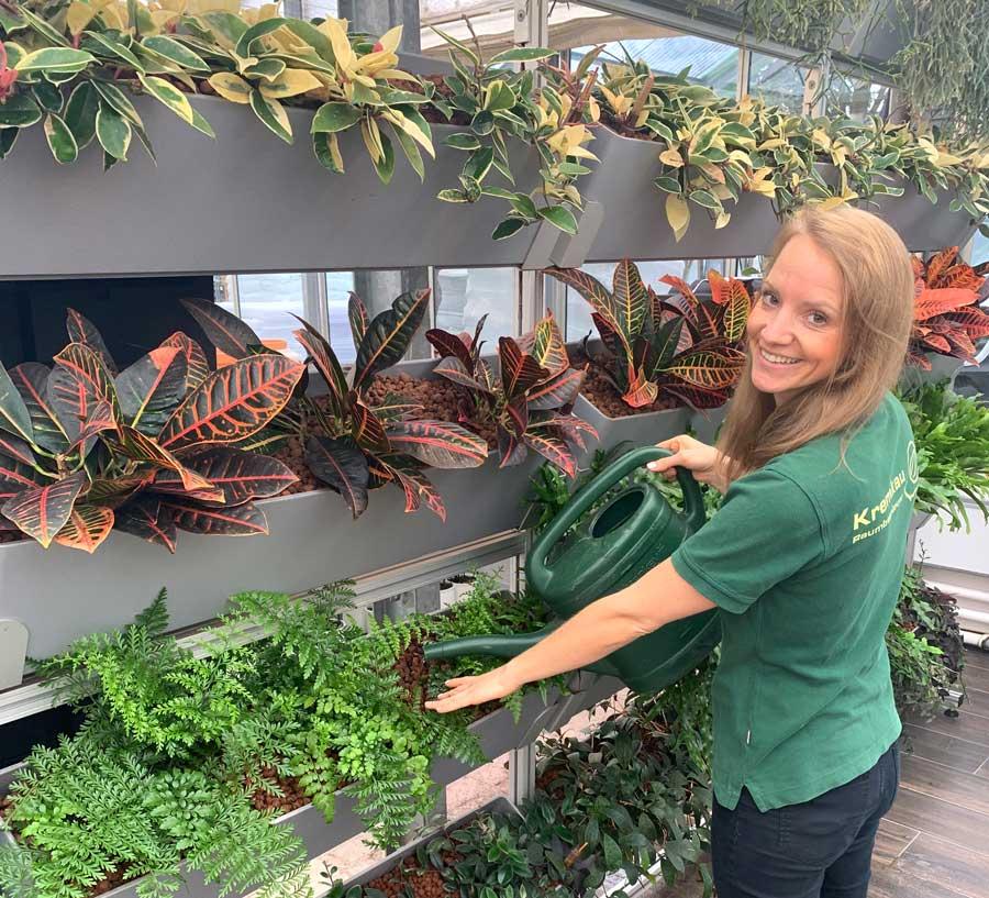 Kremkau Pflanzenpflege